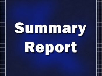 Summary-Report