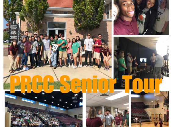PRCC Day photo grid