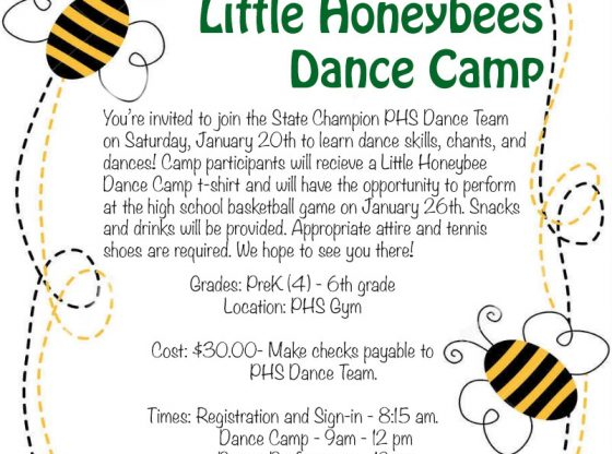 little honeybee camp flyer