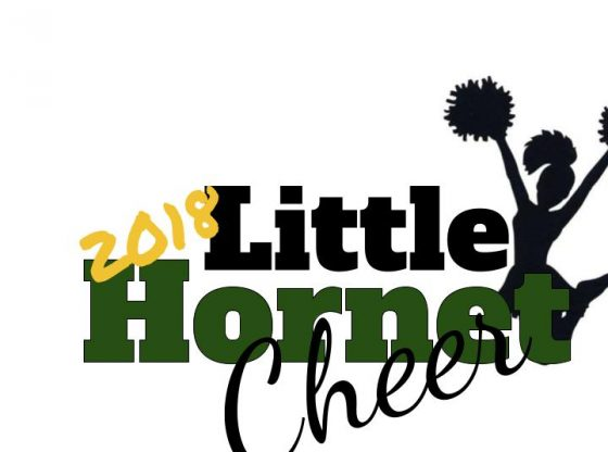 Little Hornets Cheer 2018