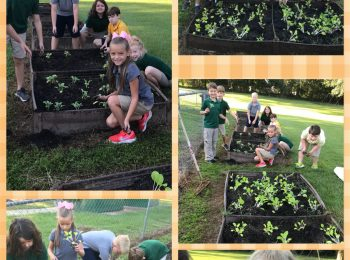 Children plant at garden at PLE