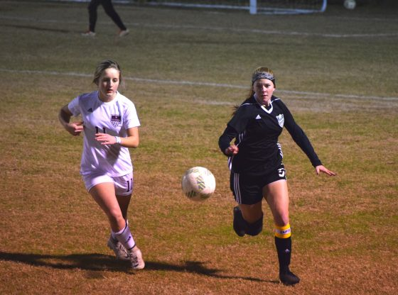 The Lady Hornets faced off and emerged victorious in a number of games this month.