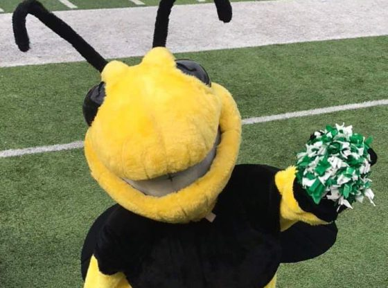The PHS Mascot, Buzz, entertaining the fans.