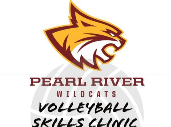 PRCC Volleyball Clinic