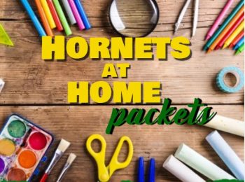 Hornets at Home